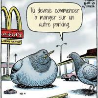 Le Chili part en guerre contre l'obésité