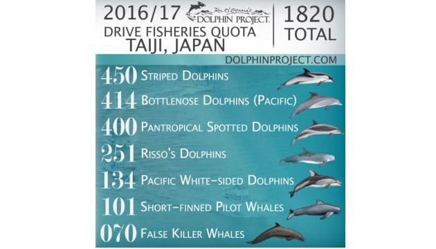 quota-2016-2017-taiji