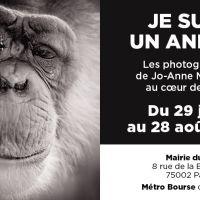 Exposition photos à Paris