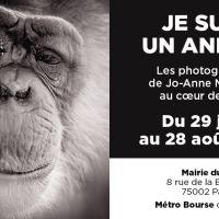 Exposition photos à Paris