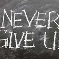 N'abandonne jamais....